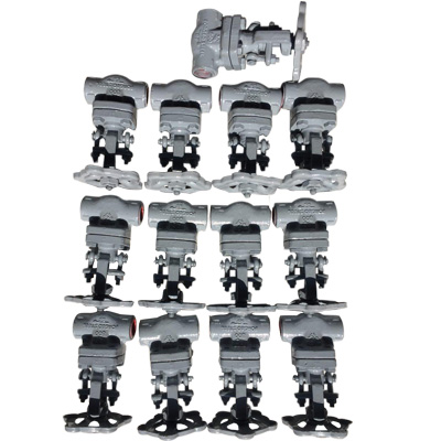 Forged Globe Valve Manufacturer in Ahmedabad