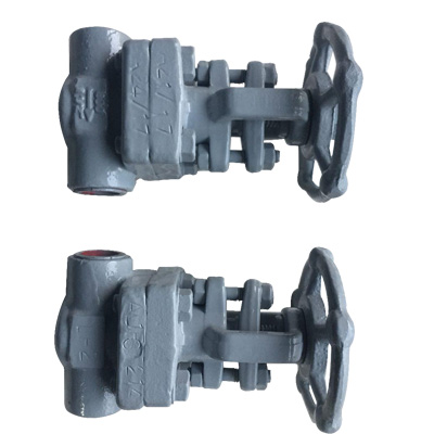 GLV2 - Our professionals are engaged in manufacturing of Globe Valve India