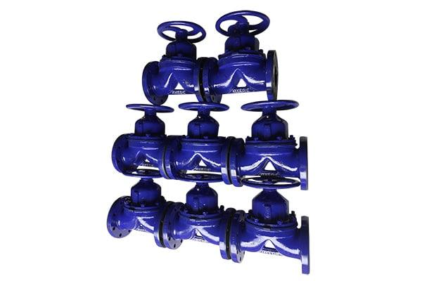 diaphragm valve exporter gujarat
