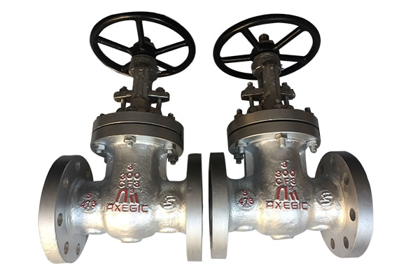 leading globe valves manufacturer and supplier,exporter from ahmedabad