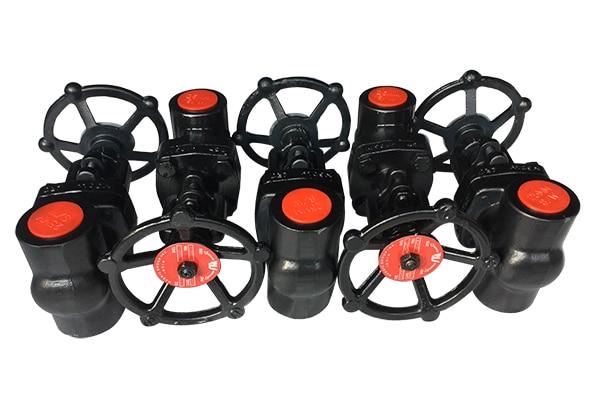 globe valve manufacturer and dealer in gujarat